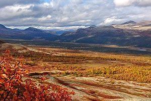 Nyt høsten med ferske, gratis kart på mobiltelefonen